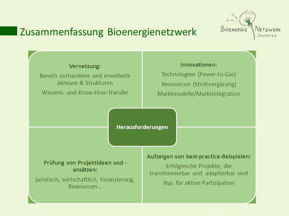 Zusammenfassung Bioenergienetzwerk 13 Vernetzung: Bereits vorhandene und erweiterte Akteure & Strukturen Wissens- und Know-How-Transfer Innovationen: