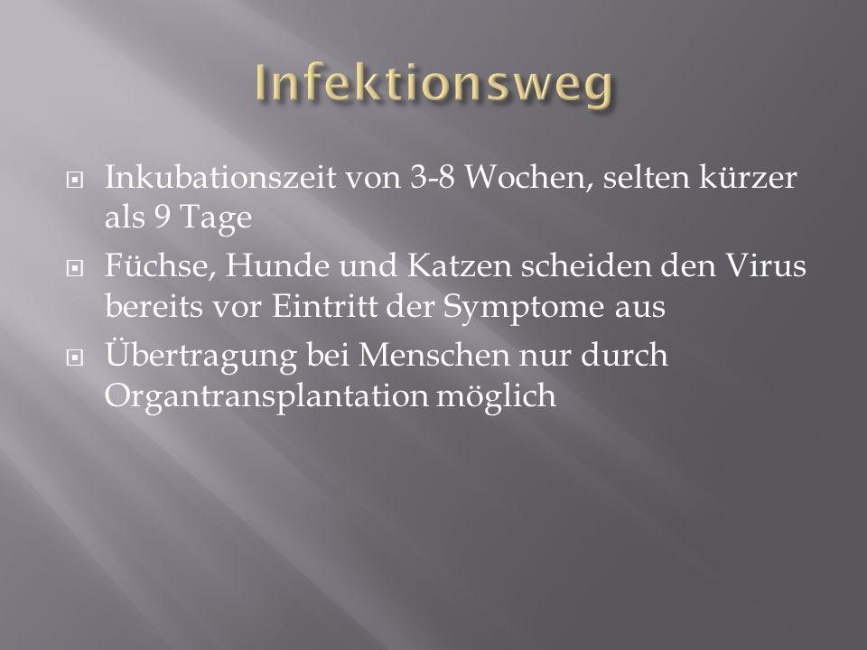 1.Prodromalstadium Uncharakteristische Beschwerden Manchmal Fieber 2.