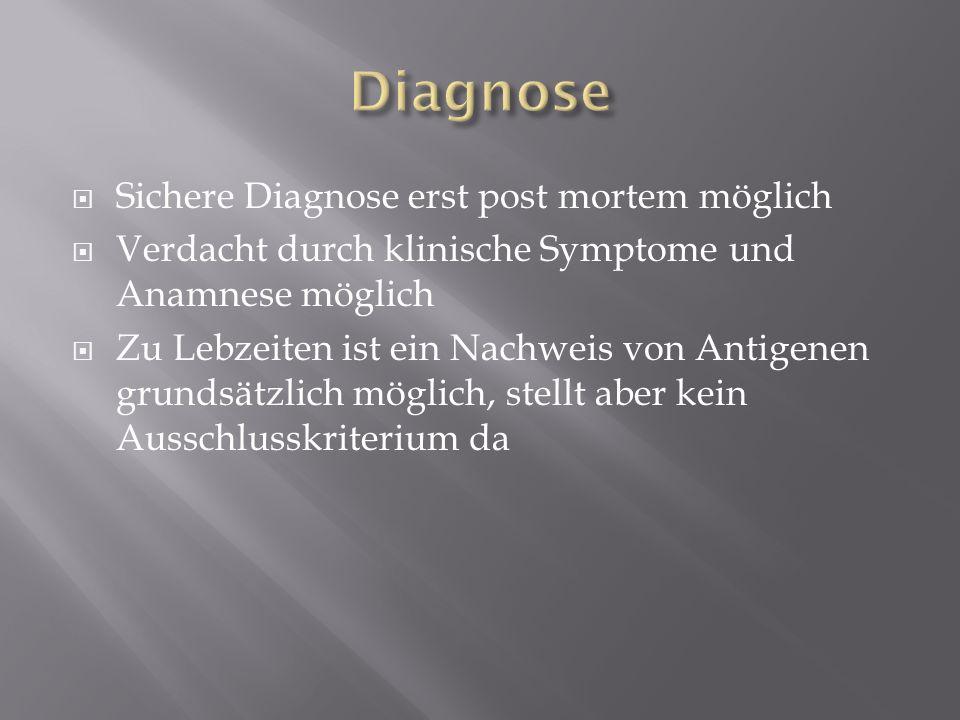 Sichere Diagnose erst post mortem möglich Verdacht durch klinische Symptome und Anamnese möglich Zu Lebzeiten ist ein Nachweis von Antigenen grundsätz
