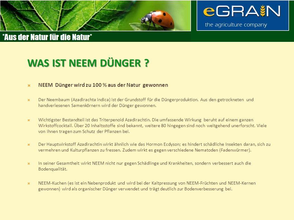 NEEM Dünger wird zu 100 % aus der Natur gewonnen Der Neembaum (Azadirachta indica) ist der Grundstoff für die Düngerproduktion.