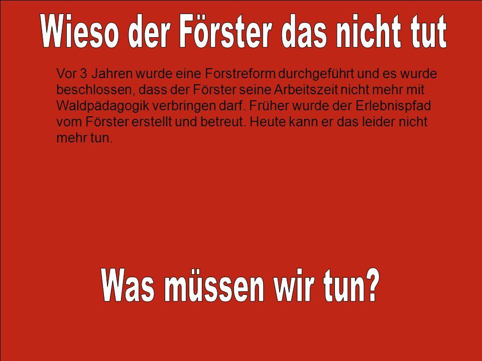 Vor 3 Jahren wurde eine Forstreform durchgeführt und es wurde beschlossen, dass der Förster seine Arbeitszeit nicht mehr mit Waldpädagogik verbringen
