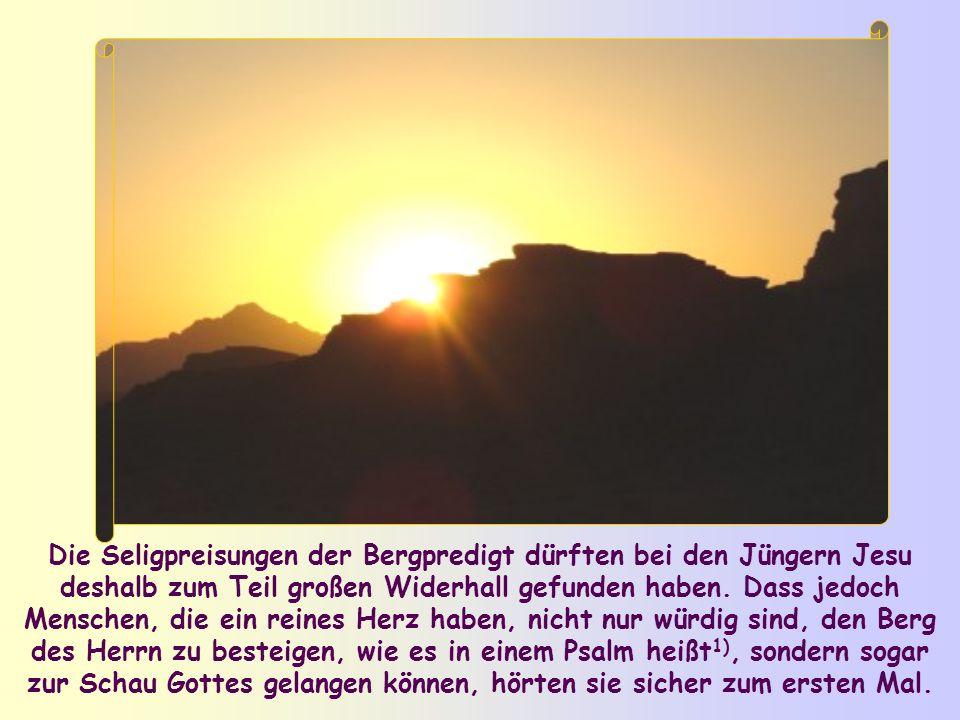 Die Seligpreisungen der Bergpredigt dürften bei den Jüngern Jesu deshalb zum Teil großen Widerhall gefunden haben.