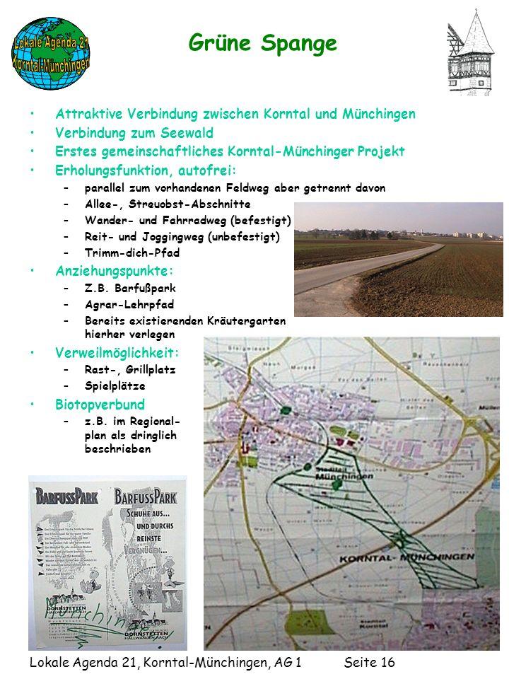 Lokale Agenda 21, Korntal-Münchingen, AG 1 Seite 16 Grüne Spange Attraktive Verbindung zwischen Korntal und Münchingen Verbindung zum Seewald Erstes gemeinschaftliches Korntal-Münchinger Projekt Erholungsfunktion, autofrei: –parallel zum vorhandenen Feldweg aber getrennt davon –Allee-, Streuobst-Abschnitte –Wander- und Fahrradweg (befestigt) –Reit- und Joggingweg (unbefestigt) –Trimm-dich-Pfad Anziehungspunkte: –Z.B.