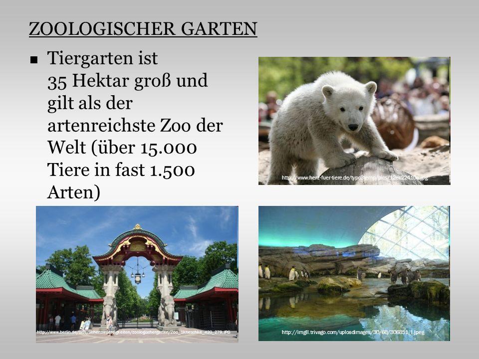 ZOOLOGISCHER GARTEN Tiergarten ist 35 Hektar groß und gilt als der artenreichste Zoo der Welt (über 15.000 Tiere in fast 1.500 Arten) http://www.berlin.de/orte/sehenswuerdigkeiten/zoologischergarten/Zoo_1kneschke_420_279.JPG http://www.herz-fuer-tiere.de/typo3temp/pics/12ec22410a.jpg http://imgll.trivago.com/uploadimages/30/68/306851_l.jpeg