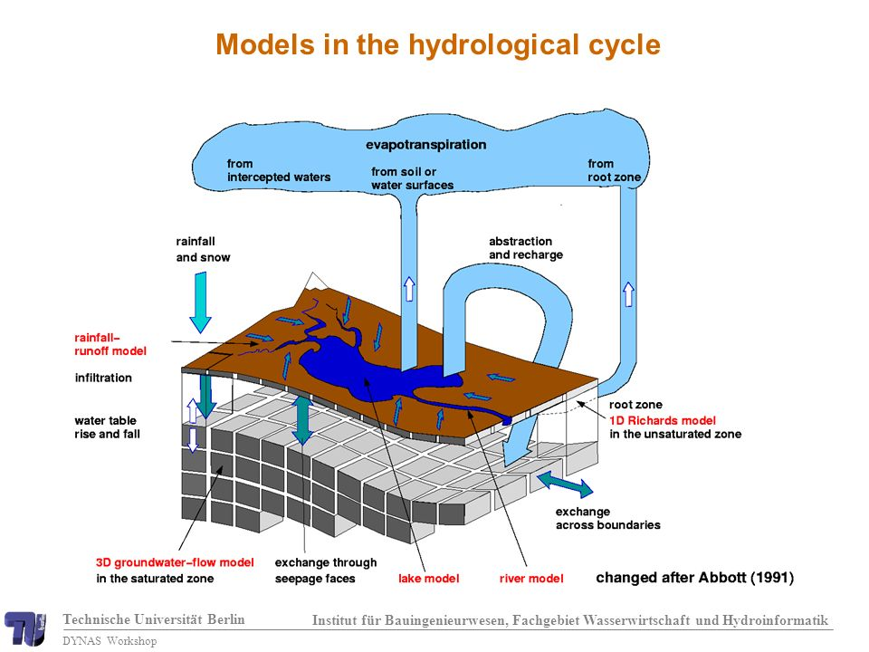 Technische Universität Berlin Institut für Bauingenieurwesen, Fachgebiet Wasserwirtschaft und Hydroinformatik DYNAS Workshop Models in the hydrological cycle