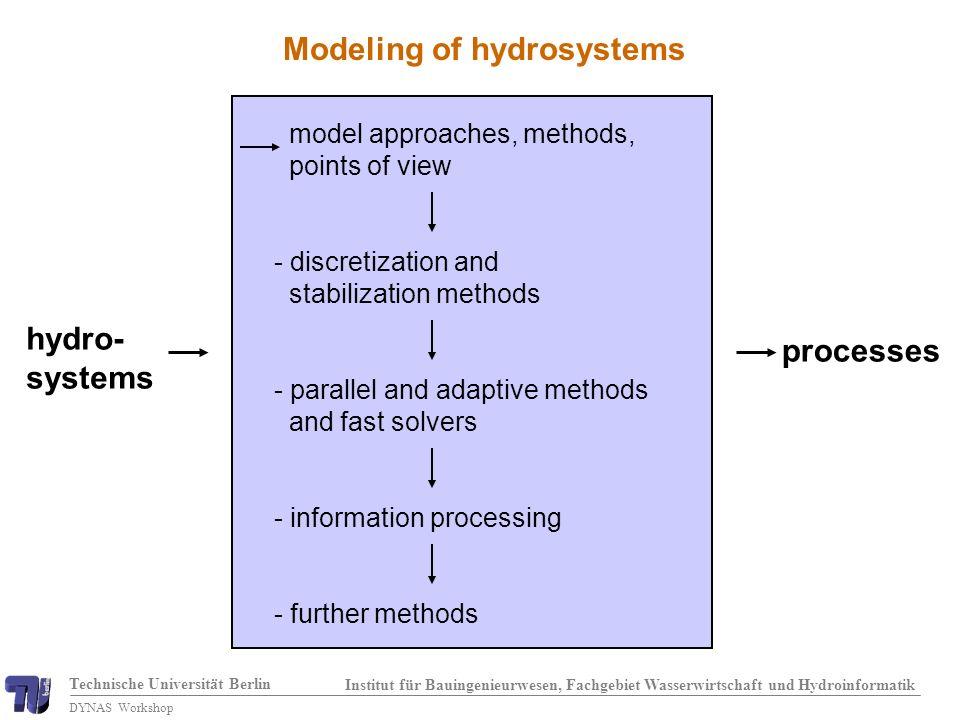 Technische Universität Berlin Institut für Bauingenieurwesen, Fachgebiet Wasserwirtschaft und Hydroinformatik DYNAS Workshop Pham Van (2004) Water saturation for different p d : homogeneous case