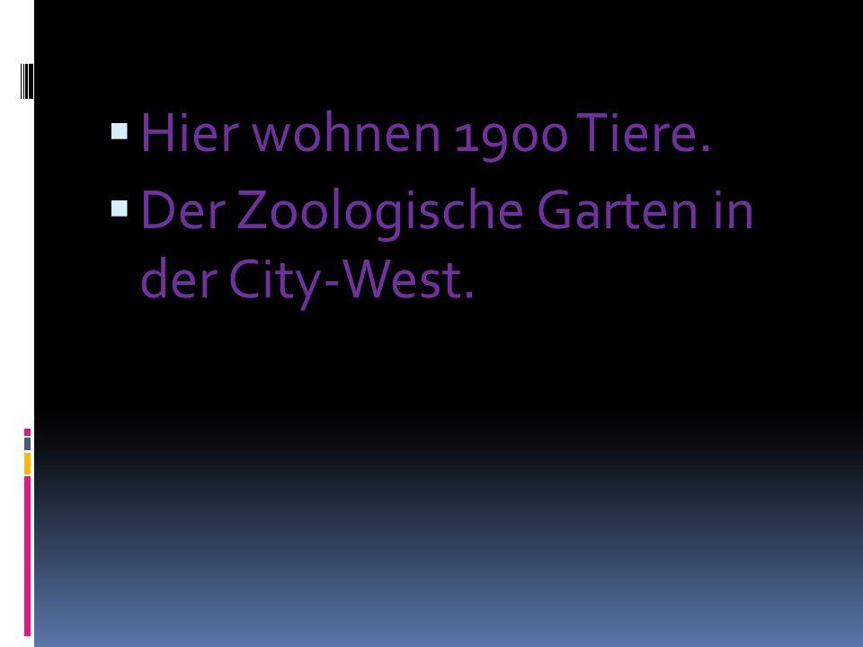 Hier wohnen 1900 Tiere. Der Zoologische Garten in der City-West.