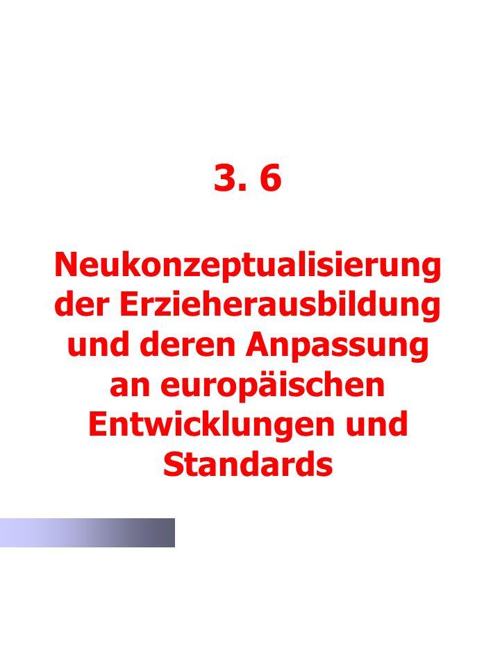 3. 6 Neukonzeptualisierung der Erzieherausbildung und deren Anpassung an europäischen Entwicklungen und Standards