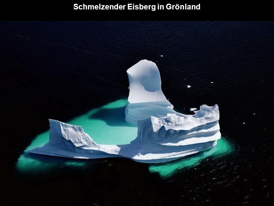 Schmelzender Eisberg in Grönland