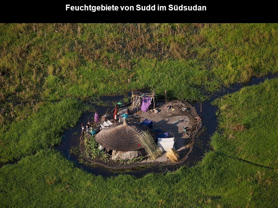 Feuchtgebiete von Sudd im Südsudan