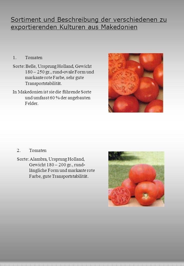 Sortiment und Beschreibung der verschiedenen zu exportierenden Kulturen aus Makedonien 1.Tomaten Sorte: Belle, Ursprung Holland, Gewicht 180 – 250 gr., rund-ovale Form und markante rote Farbe, sehr gute Transportstabilität.