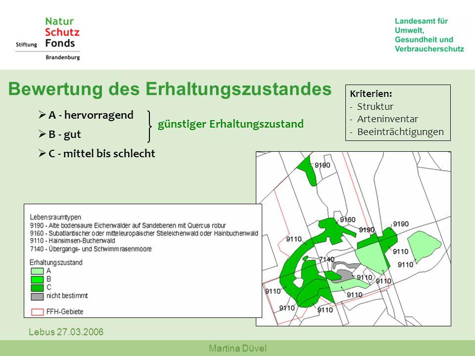 Martina Düvel Lebus 27.03.2006 Bewertung des Erhaltungszustandes A - hervorragend B - gut C - mittel bis schlecht günstiger Erhaltungszustand Kriterie