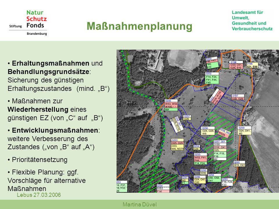 Martina Düvel Lebus 27.03.2006 Erhaltungsmaßnahmen und Behandlungsgrundsätze: Sicherung des günstigen Erhaltungszustandes (mind. B) Maßnahmen zur Wied
