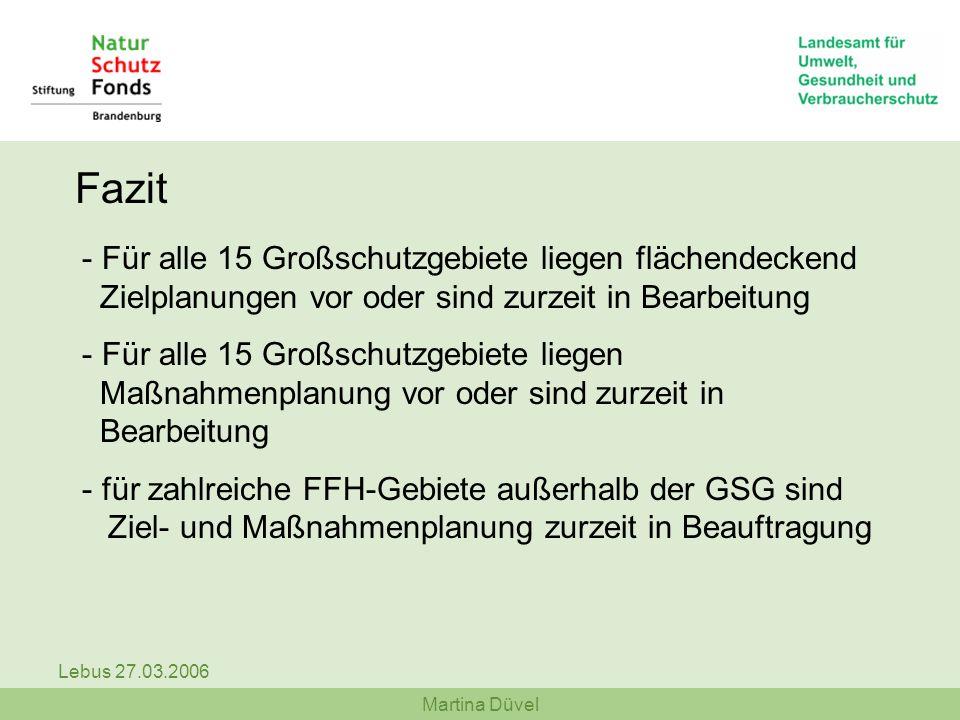 Martina Düvel Lebus 27.03.2006 Fazit - Für alle 15 Großschutzgebiete liegen flächendeckend Zielplanungen vor oder sind zurzeit in Bearbeitung - Für al