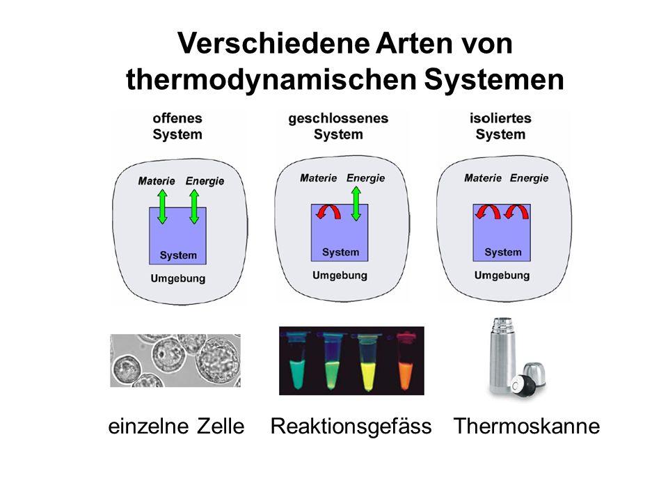 Verschiedene Arten von thermodynamischen Systemen einzelne Zelle Reaktionsgefäss Thermoskanne