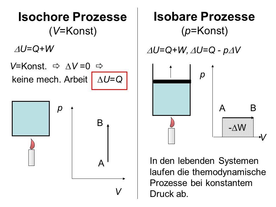 V=Konst. V =0 keine mech. Arbeit U=Q Isochore Prozesse (V=Konst) p V A B U=Q+W Isobare Prozesse (p=Konst) U=Q+W, U=Q - p V - W p V A B In den lebenden