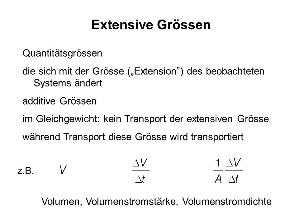 Extensive Grössen Quantitätsgrössen die sich mit der Grösse (Extension) des beobachteten Systems ändert additive Grössen im Gleichgewicht: kein Transp