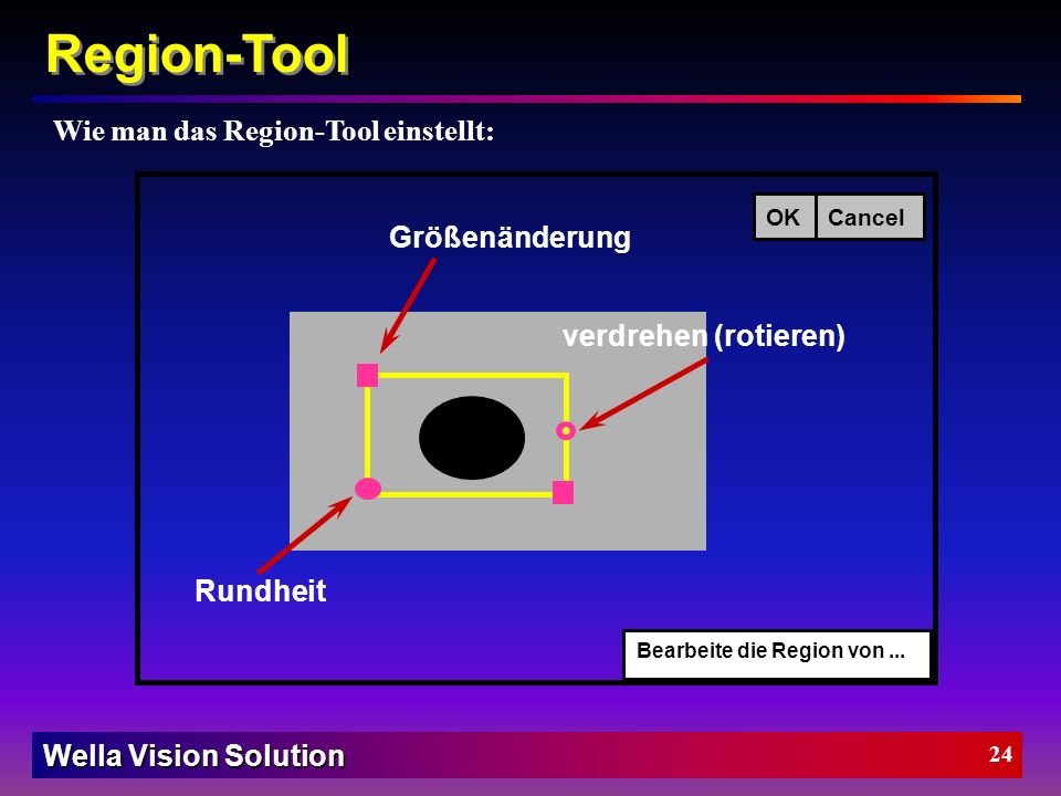 Wella Vision Solution 23 Region-Tool BeschreibungRegion-Tool