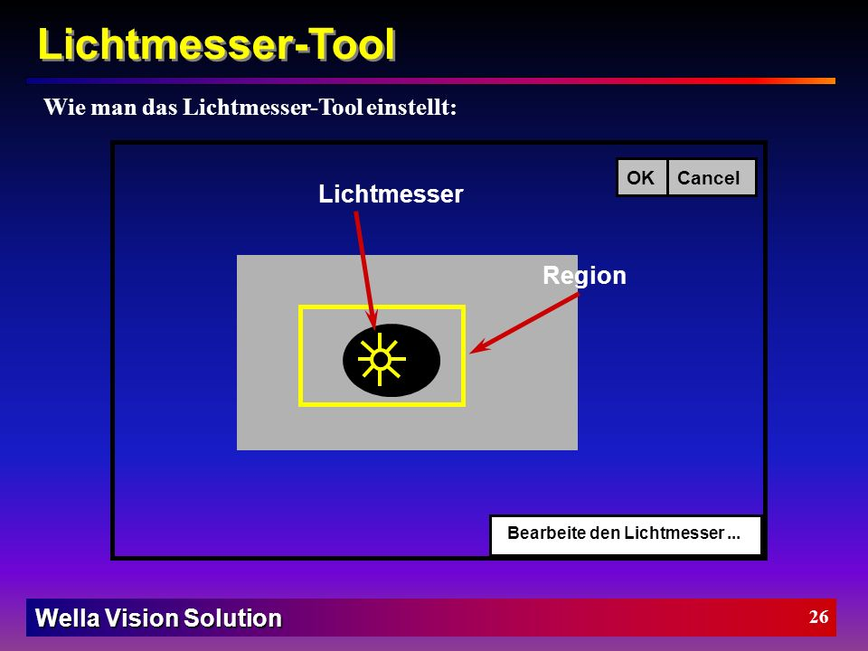 Wella Vision Solution 25 Lichtmesser-Tool BeschreibungLichtmesser-Tool