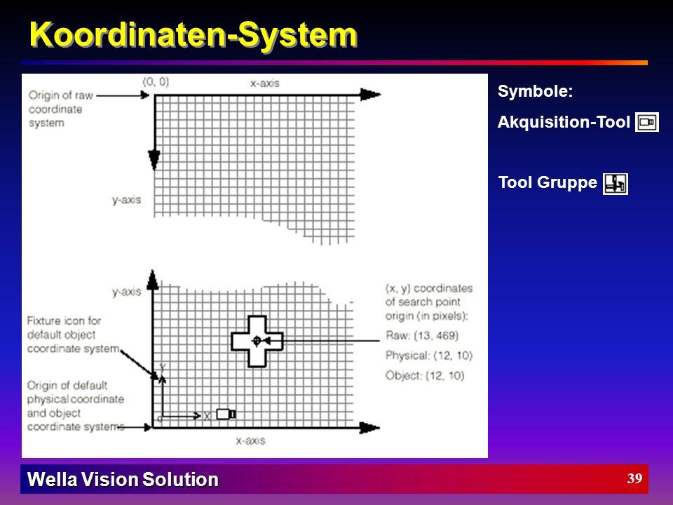 Wella Vision Solution 38 Koordinaten-System Raw (Ur-) Koordinaten-System Physikalisches Koordinaten-System