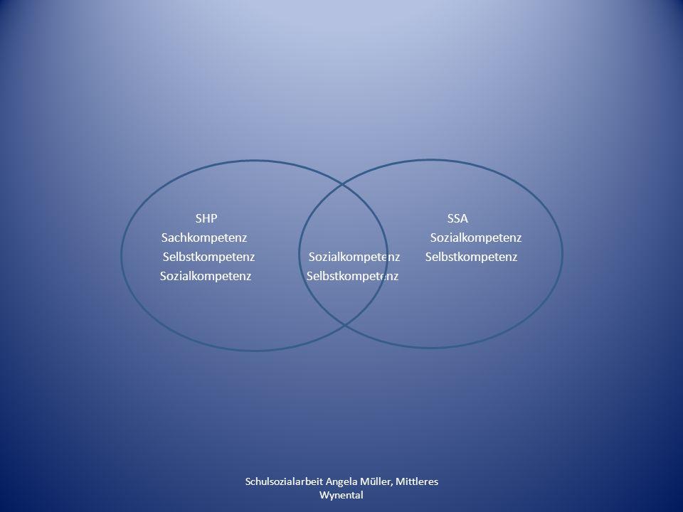 Wirkungsfaktoren für eine gelingende Zusammenarbeit Partnerschaftliches Verhältnis Bestehende Unterschiede sind anzuerkennen Aufgaben, Kompetenzen, Abläufe sind zu klären Akzeptanz entsteht durch gegenseitiges Kennenlernen in Aufgaben und Arbeitsweisen Gemeinsame Zielsetzungen entwickeln Haltung Schulsozialarbeit Angela Müller, Mittleres Wynental