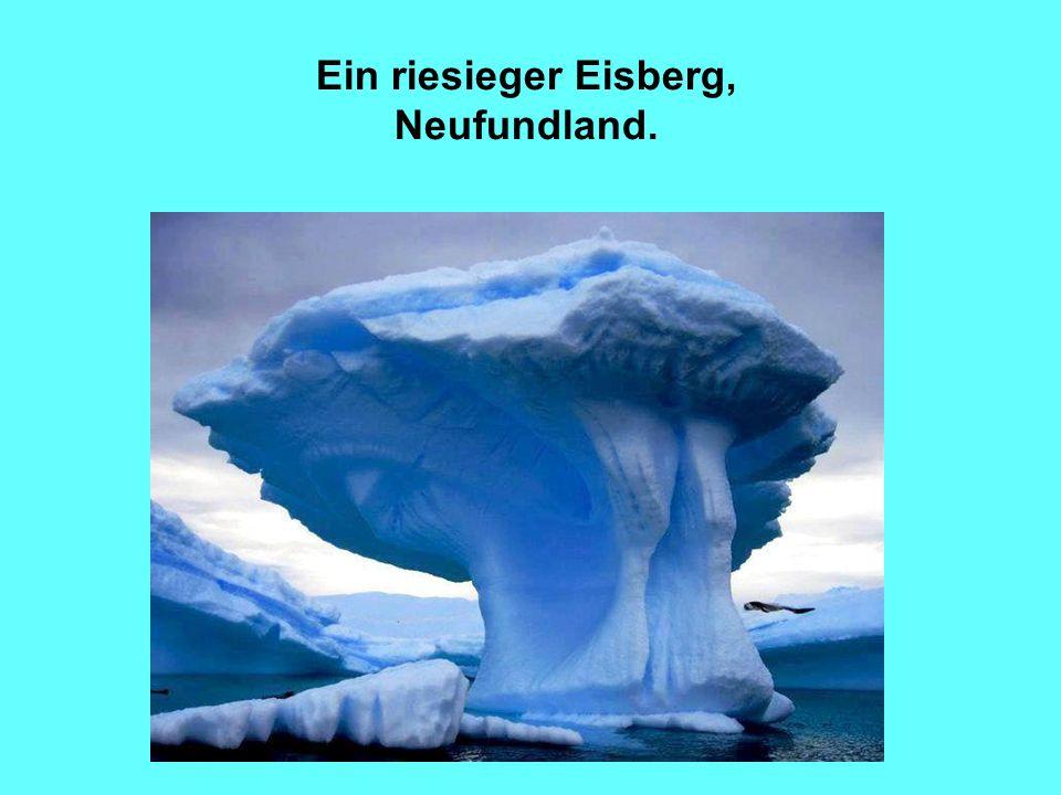17 Ein riesieger Eisberg, Neufundland.