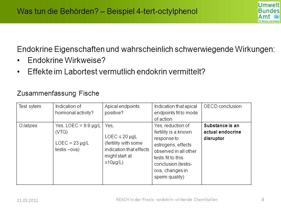 Was tun die Behörden? – Beispiel 4-tert-octylphenol Endokrine Eigenschaften und wahrscheinlich schwerwiegende Wirkungen: Endokrine Wirkweise? Effekte