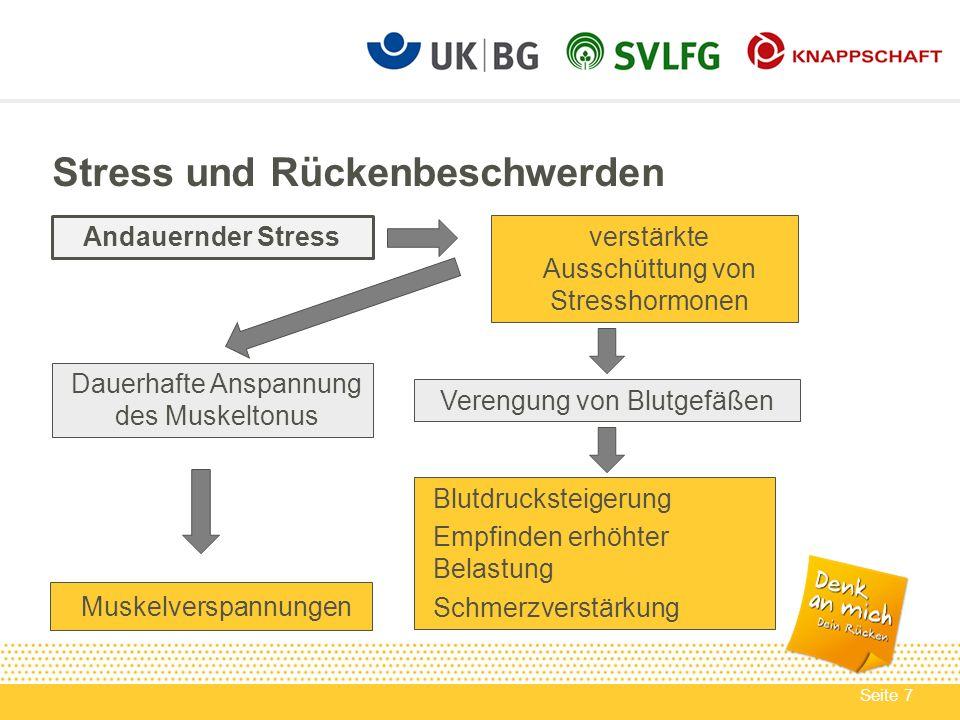 Seite 8 Angaben zu StressRückenschmerzenMuskelschmerzen Kein Stress11,2 %9,1 % Stress71,1 %68,4 % Stress und Rückenbeschwerden Ergebnisse eine Befragung in der EU Quelle: Vierter European Work Conditions Survey (2005)