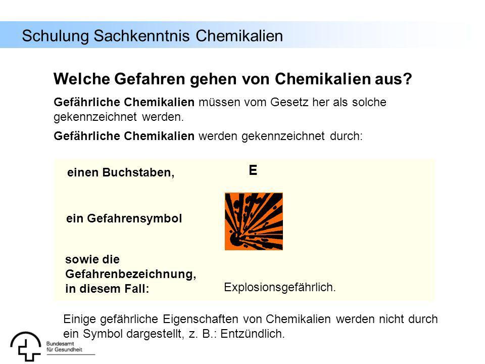 Schulung Sachkenntnis Chemikalien Gefährliche Chemikalien werden gekennzeichnet durch: Welche Gefahren gehen von Chemikalien aus? einen Buchstaben, ei
