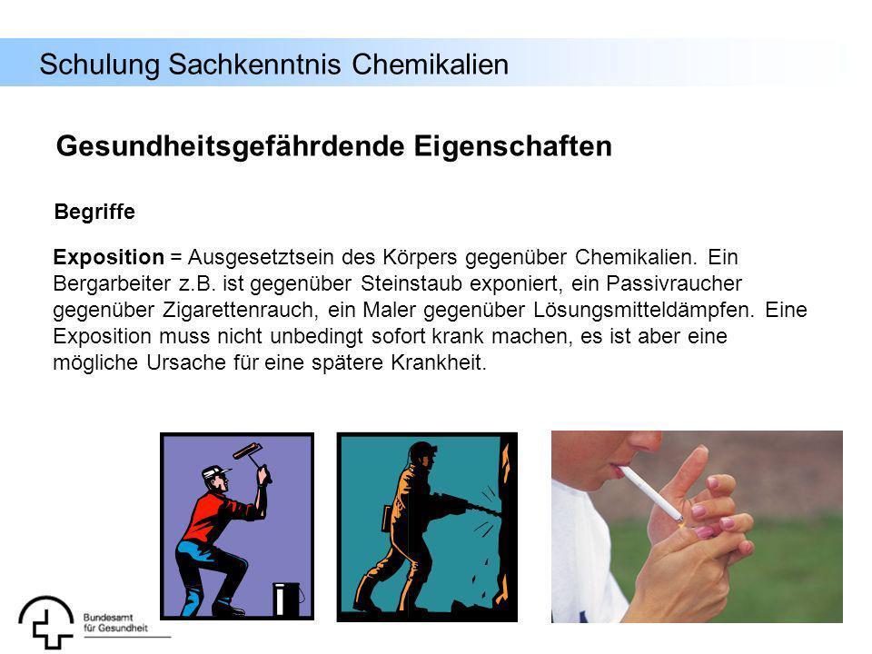 Schulung Sachkenntnis Chemikalien Begriffe Exposition = Ausgesetztsein des Körpers gegenüber Chemikalien. Ein Bergarbeiter z.B. ist gegenüber Steinsta