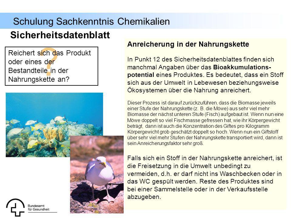 Schulung Sachkenntnis Chemikalien ? Reichert sich das Produkt oder eines der Bestandteile in der Nahrungskette an? Anreicherung in der Nahrungskette I