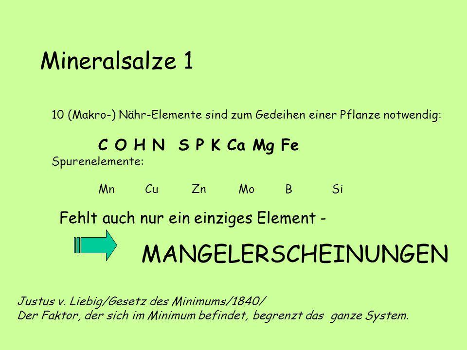 Mineralsalze 1 10 (Makro-) Nähr-Elemente sind zum Gedeihen einer Pflanze notwendig: C O H N S P K Ca Mg Fe Spurenelemente: MnCuZnMoBSi Fehlt auch nur ein einziges Element - MANGELERSCHEINUNGEN Justus v.