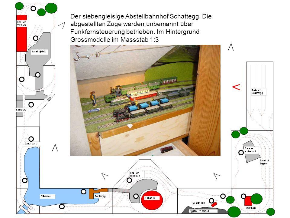 Der siebengleisige Abstellbahnhof Schattegg. Die abgestellten Züge werden unbemannt über Funkfernsteuerung betrieben. Im Hintergrund Grossmodelle im M