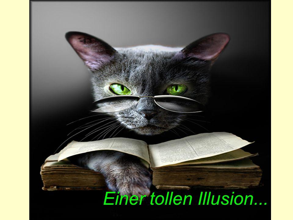 Einer Illusion meiner scharfen Augen.