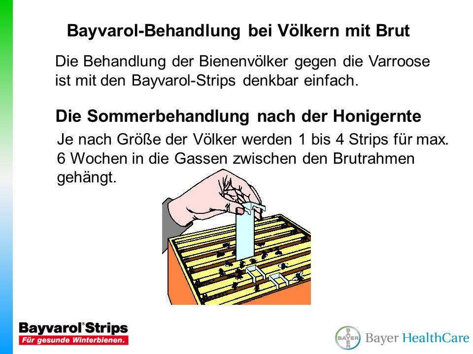 Bei Sammelbrutablegern ist die Behandlung mit Bayvarol besonders Wirkungsvoll da in deren Brutzellen oft mehrere Varroen sitzen.