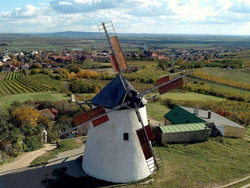 Mit der Weinbergschnecke zur Windmühle