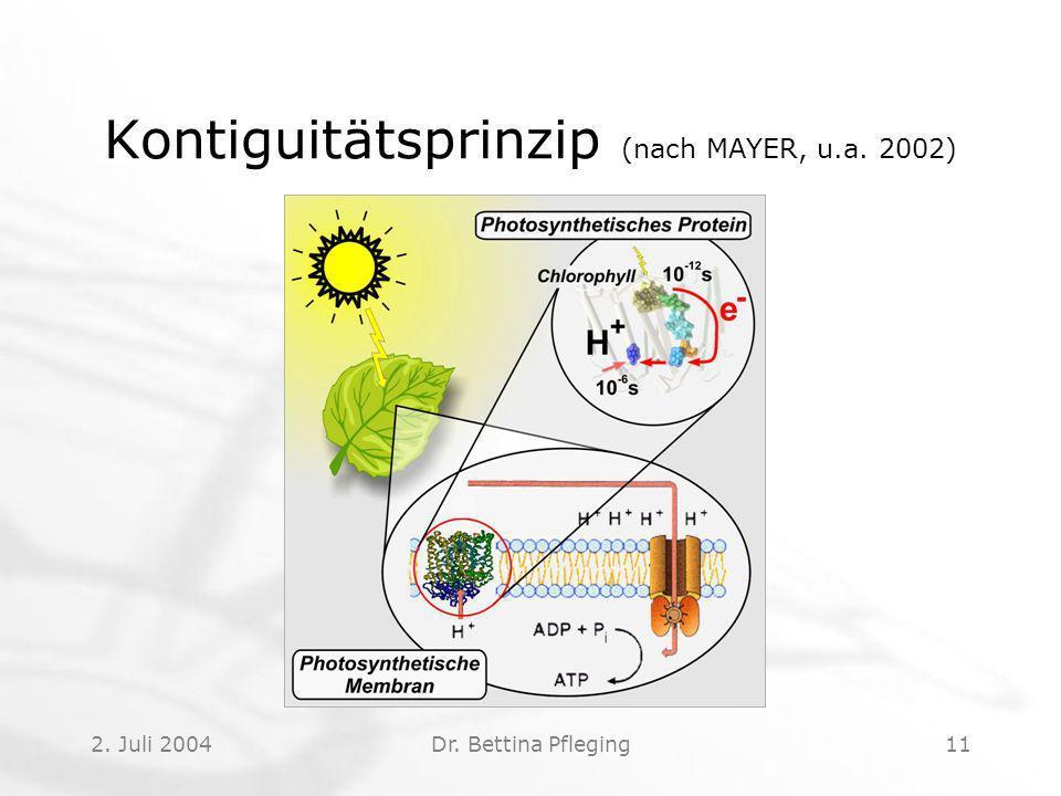 2. Juli 2004Dr. Bettina Pfleging11 Kontiguitätsprinzip (nach MAYER, u.a. 2002)