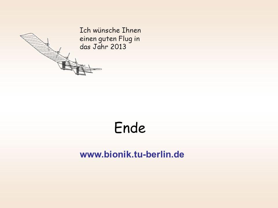 Ende www.bionik.tu-berlin.de Ich wünsche Ihnen einen guten Flug in das Jahr 2013