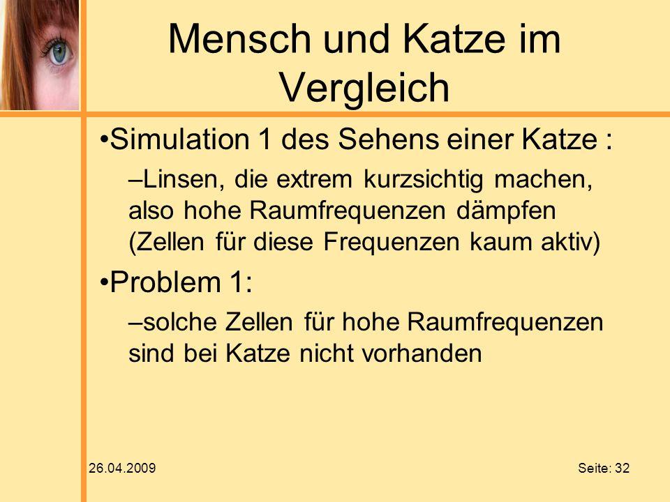 26.04.2009 Seite: 32 Mensch und Katze im Vergleich Simulation 1 des Sehens einer Katze : –Linsen, die extrem kurzsichtig machen, also hohe Raumfrequen