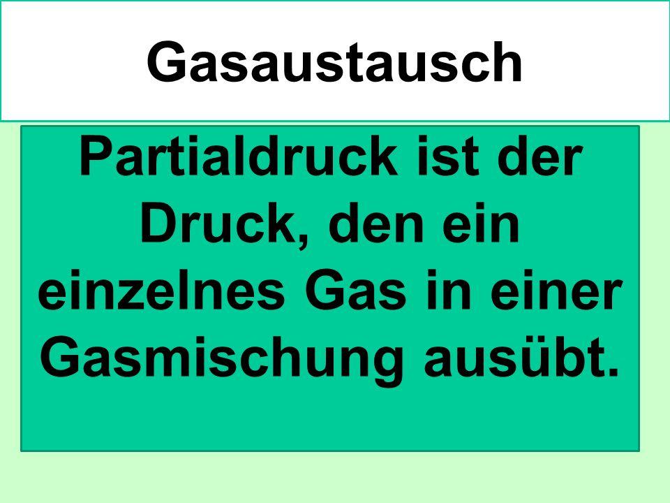 Partialdruck ist der Druck, den ein einzelnes Gas in einer Gasmischung ausübt. Gasaustausch