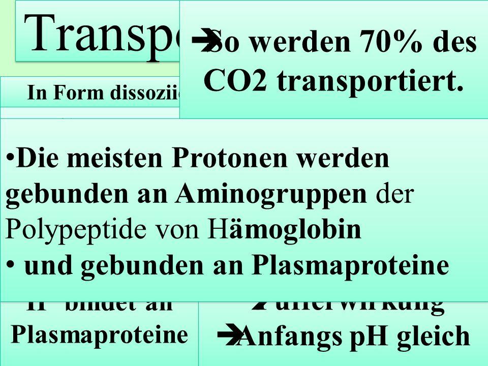 In Form dissoziierter Kohlensäure H + + HCO 3 - Carboanhydrase katalysiert Spaltung von Kohlensäure in Bikarbonat (HCO 3 - ) und Wasserstoff. H + bind