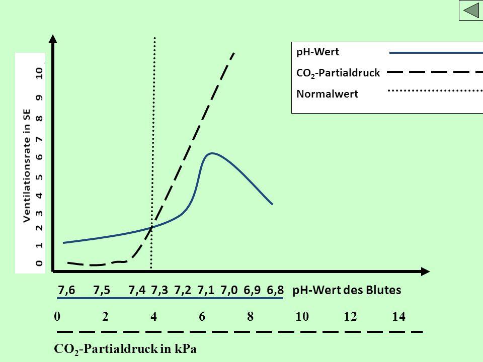 7,6 7,5 7,4 7,3 7,2 7,1 7,0 6,9 6,8 pH-Wert des Blutes pH-Wert CO 2 -Partialdruck Normalwert 02468101214 CO 2 -Partialdruck in kPa