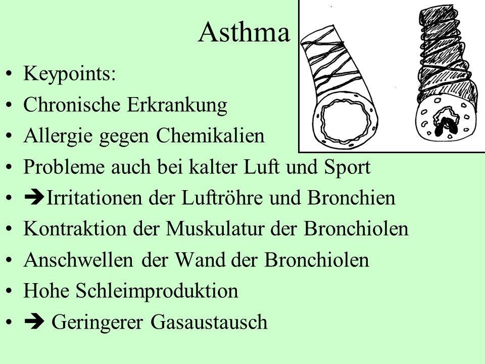 Asthma Keypoints: Chronische Erkrankung Allergie gegen Chemikalien Probleme auch bei kalter Luft und Sport Irritationen der Luftröhre und Bronchien Ko