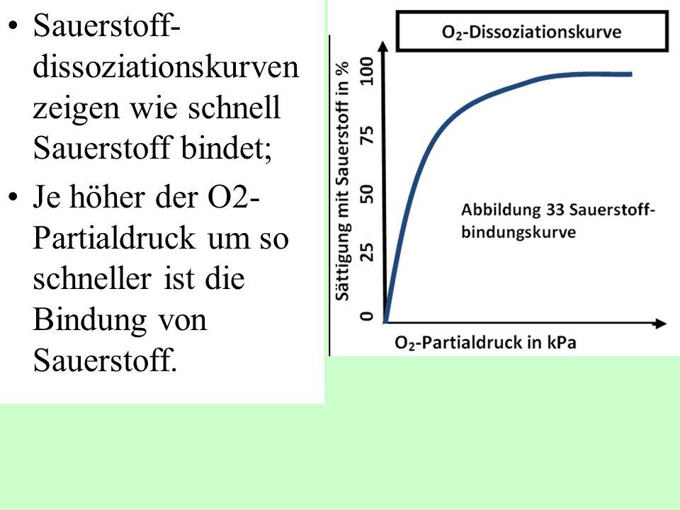 Sauerstoff- dissoziationskurven zeigen wie schnell Sauerstoff bindet; Je höher der O2- Partialdruck um so schneller ist die Bindung von Sauerstoff.