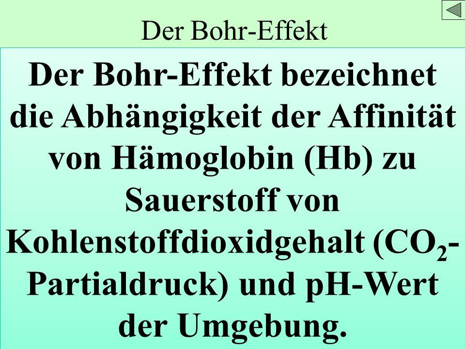 Der Bohr-Effekt Der Bohr-Effekt bezeichnet die Abhängigkeit der Affinität von Hämoglobin (Hb) zu Sauerstoff von Kohlenstoffdioxidgehalt (CO 2 - Partia