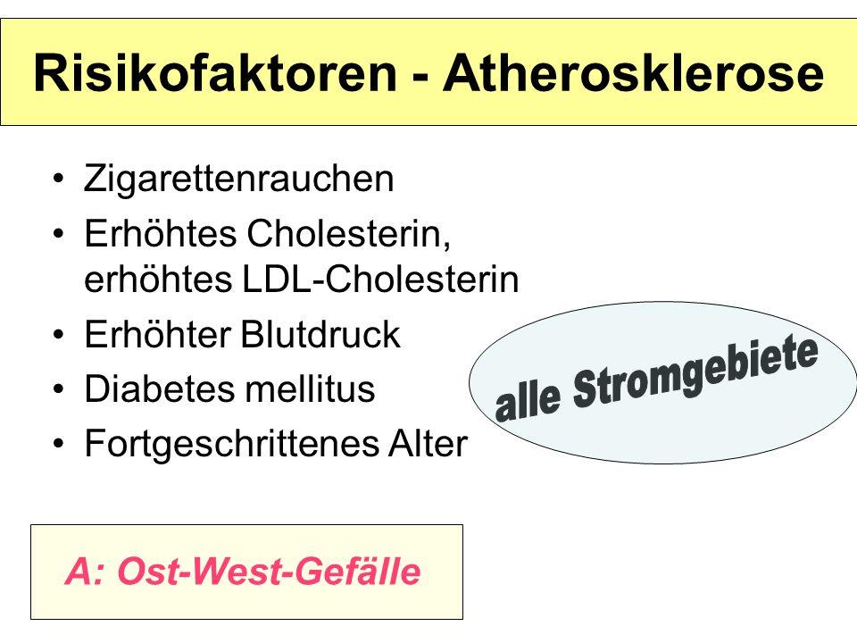 Risikofaktoren - Atherosklerose Zigarettenrauchen Erhöhtes Cholesterin, erhöhtes LDL-Cholesterin Erhöhter Blutdruck Diabetes mellitus Fortgeschrittene