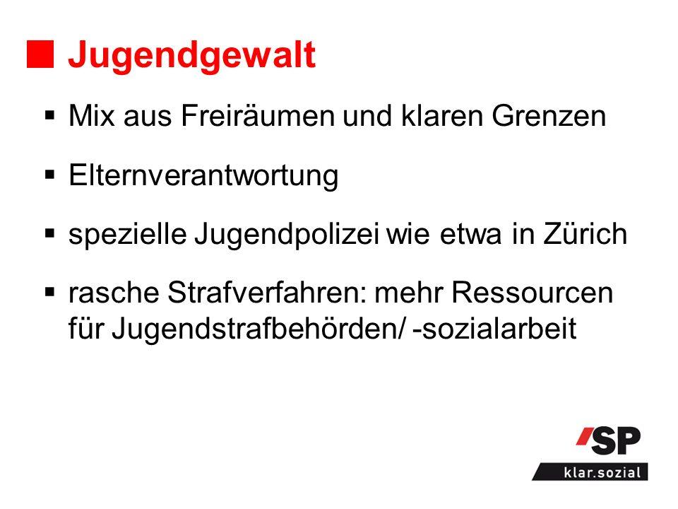 Jugendgewalt Mix aus Freiräumen und klaren Grenzen Elternverantwortung spezielle Jugendpolizei wie etwa in Zürich rasche Strafverfahren: mehr Ressourcen für Jugendstrafbehörden/ -sozialarbeit