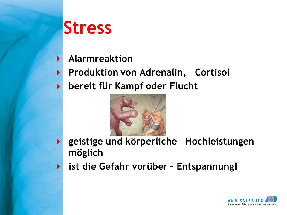 Stress Alarmreaktion Produktion von Adrenalin, Cortisol bereit für Kampf oder Flucht geistige und körperliche Hochleistungen möglich ist die Gefahr vo