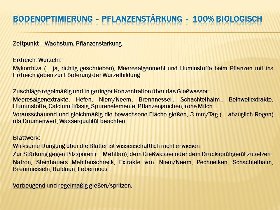 Zeitpunkt – Wachstum, Pflanzenstärkung Erdreich, Wurzeln: Mykorrhiza (… ja, richtig geschrieben), Meeresalgenmehl und Huminstoffe beim Pflanzen mit in