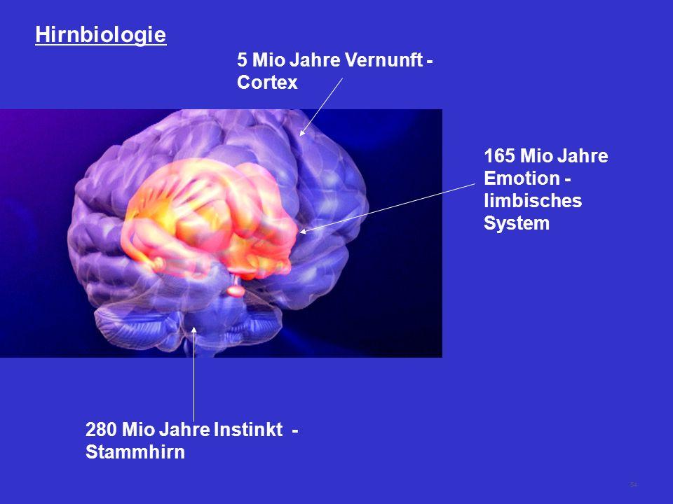 54 Hirnbiologie 280 Mio Jahre Instinkt - Stammhirn 165 Mio Jahre Emotion - limbisches System 5 Mio Jahre Vernunft - Cortex